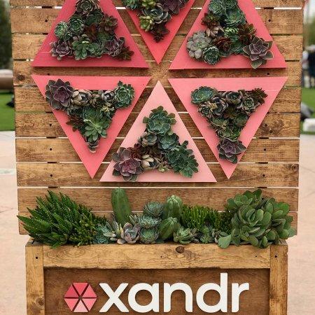 Wood Panel Planter Display
