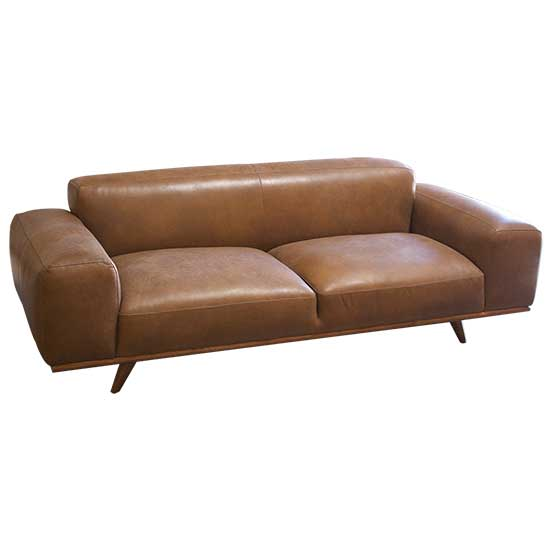 Mid Century Leather Couch