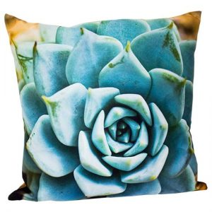Blue Agave Pillow
