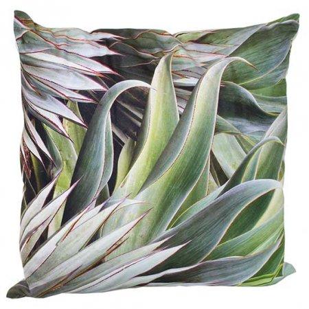 Agave Cactus Pillow