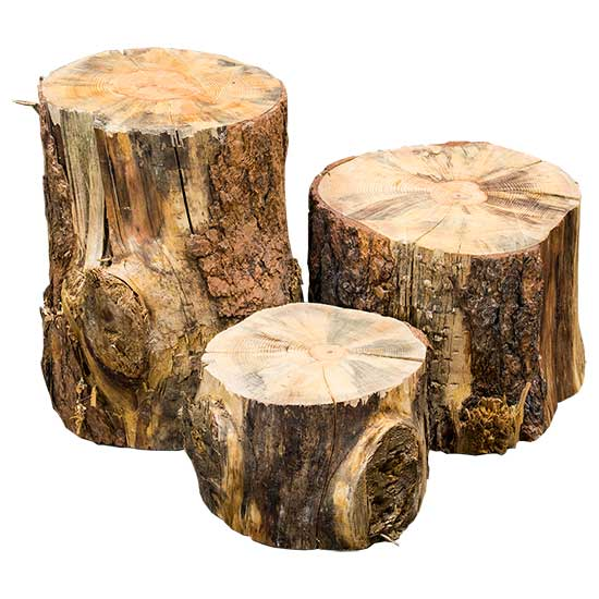 Wood Log Stumps