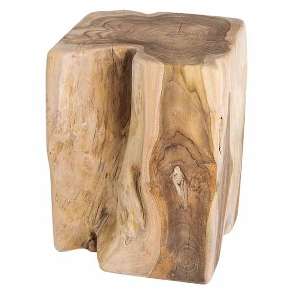 Inspired Environments Teak Trunk Side Table