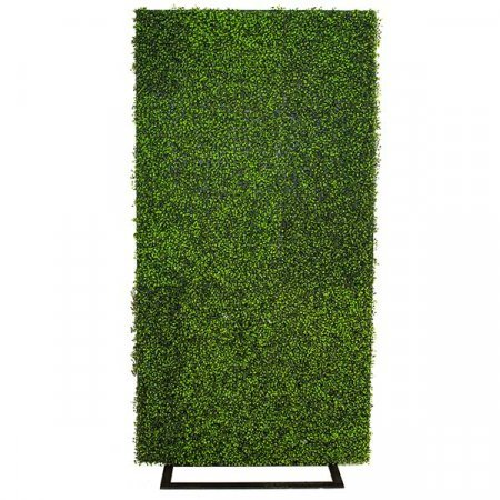 Inspired Environments Boxwood Display Frame