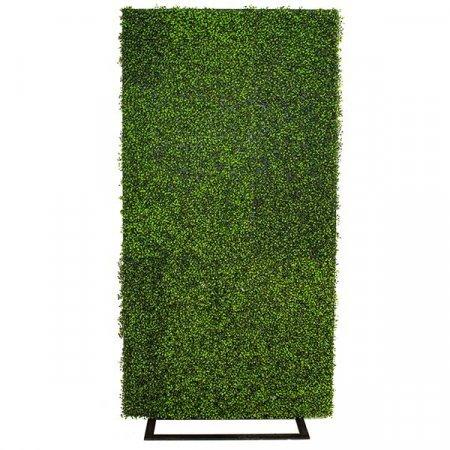Inspired Environments Boxwood Display Frame